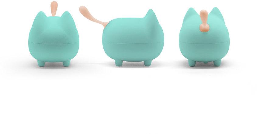 Don gato turquesa 2