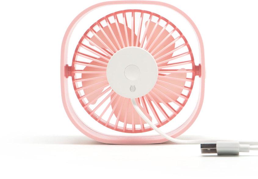 Turbo rosa 3